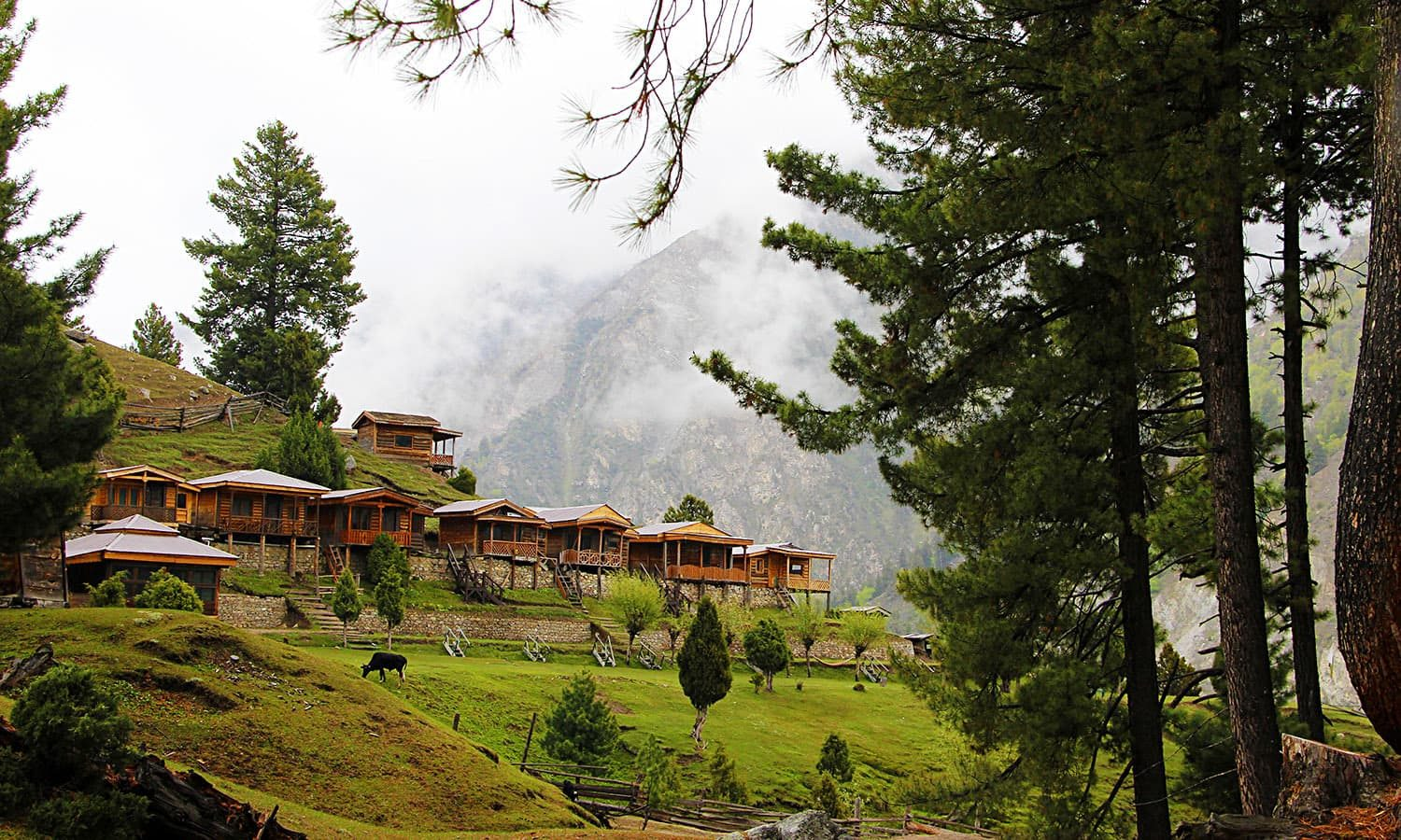 A view at Fairy Meadows